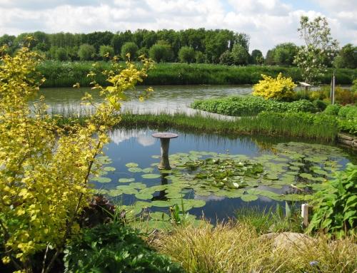 De Tuinen van Appeltern: een leuk dagje uit