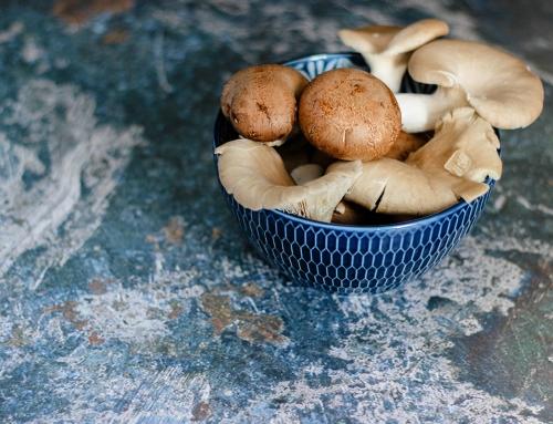 Hoe paddenstoelen eten bijdraagt aan een gezond lichaam
