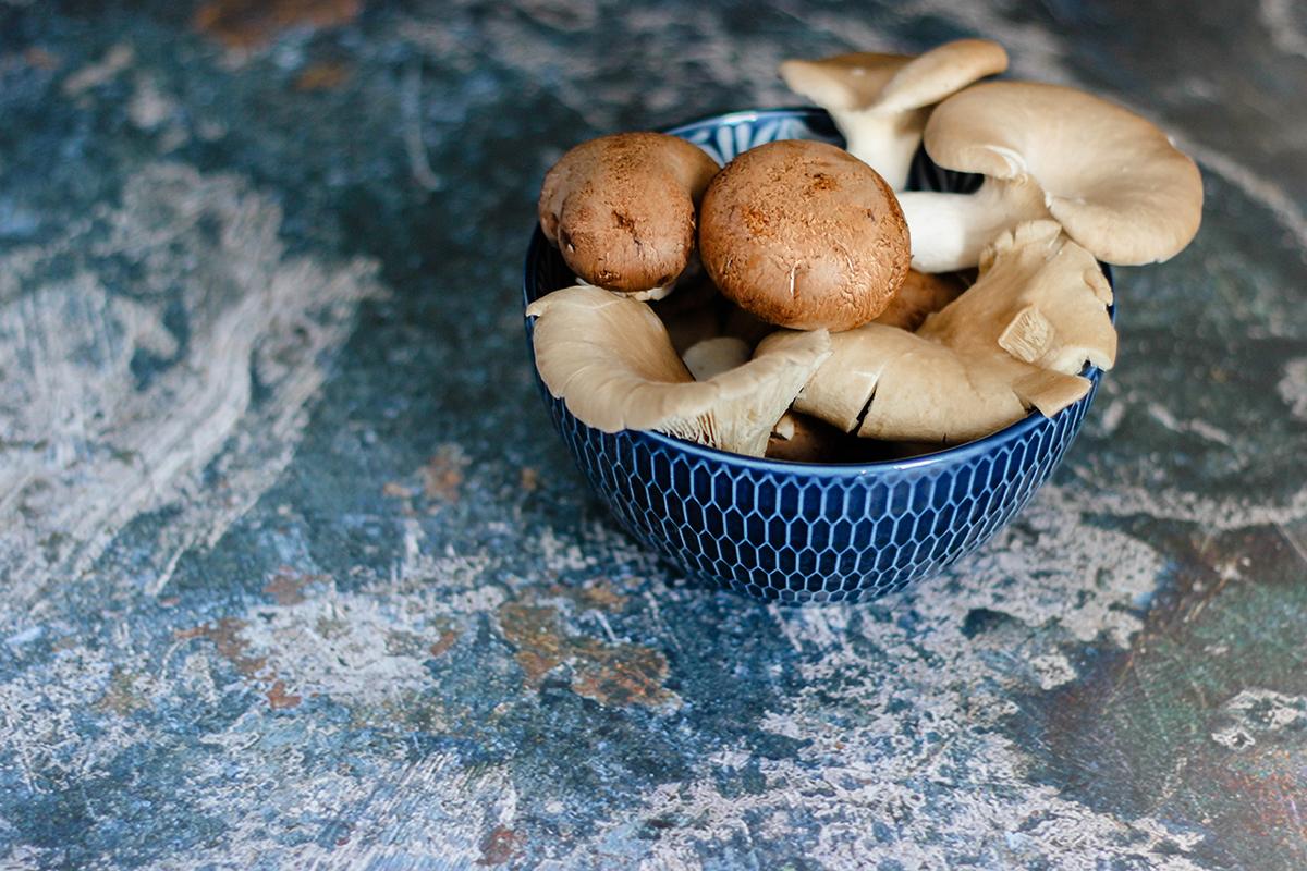 paddenstoelen eten